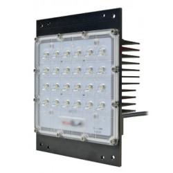 Module 30LED PRAGMA 40W IP65 - IK10